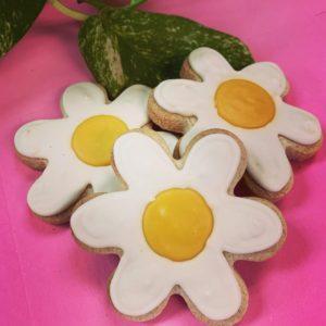 Spring Sugar Cookies